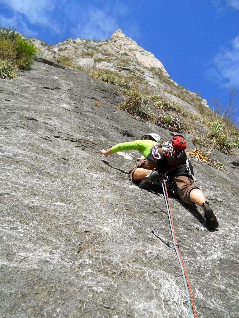 Jungle Mountaineering
