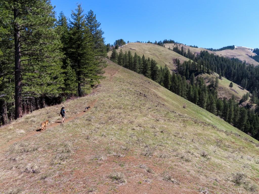 Ninemile Ridge